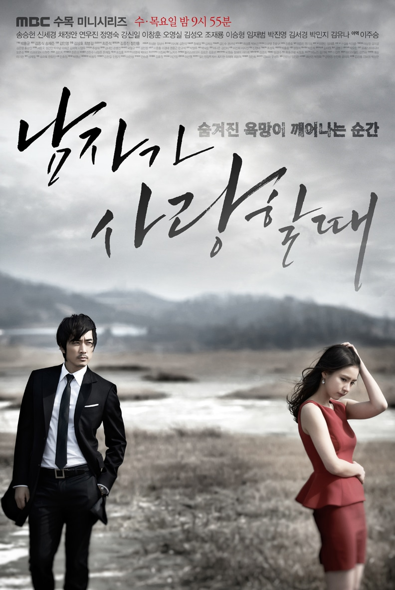 http://www.koreandrama.org/wp-content/uploads/2013/03/When-A-Man-Loves-Poster4.jpg