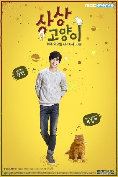 Imaginary Cat Official Poster by Koreandrama.org